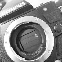 Olympus E-M10 shutter. Photo by hmx0979, dpreview.com