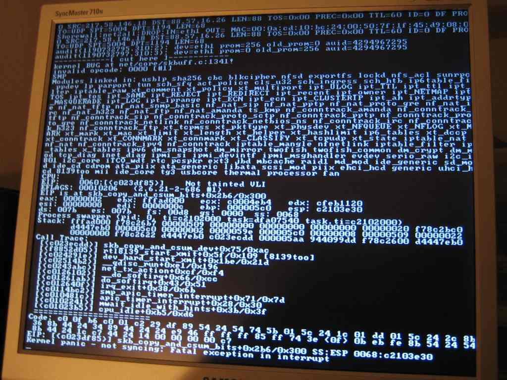 LKML: Niccolo Rigacci: PROBLEM: kernel BUG at net/core